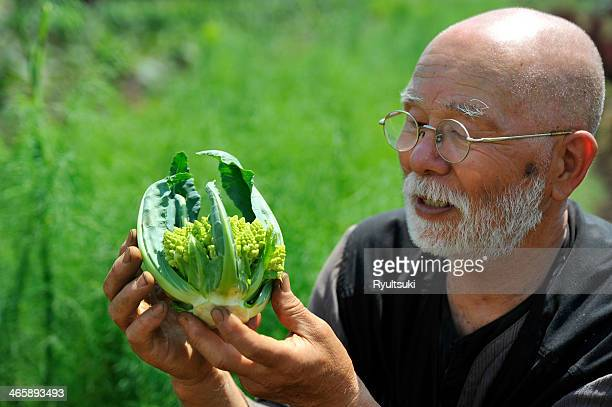 Man looking at romanesco cauliflower