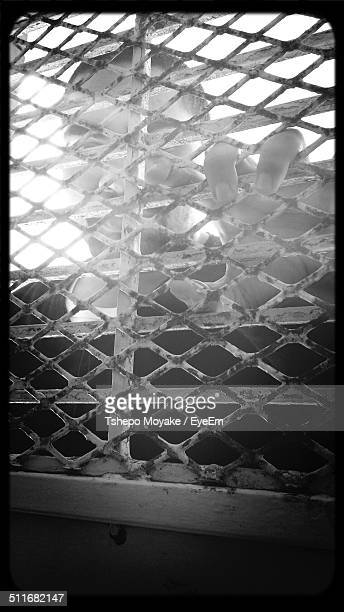Man looking through metal grid