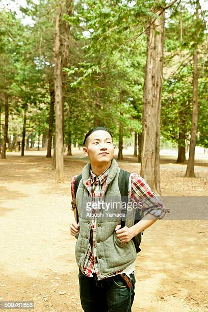 Man looking up in forest