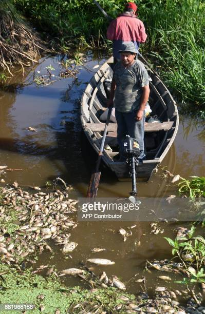 A man looks as thousands of dead fish float in the Confuso river in Villa Hayes 30km north of Asuncion on October 16 2017 Municipality authorities...