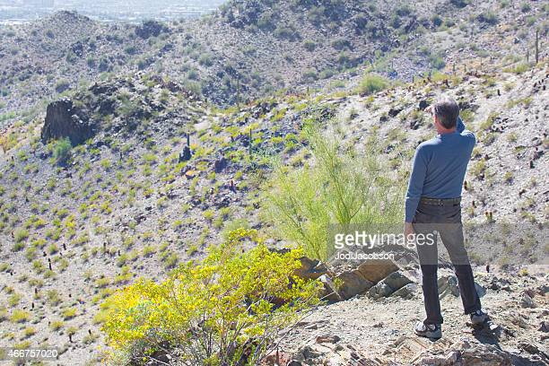 Man looks out at the Sonoran desert in Arizona  rm