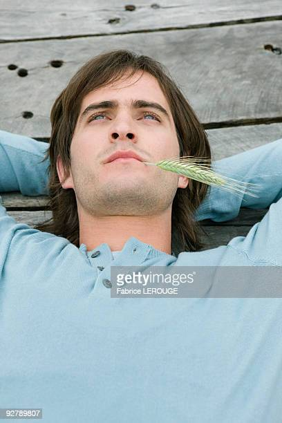 Man lying on a boardwalk and thinking with husk of wheat in his mouth