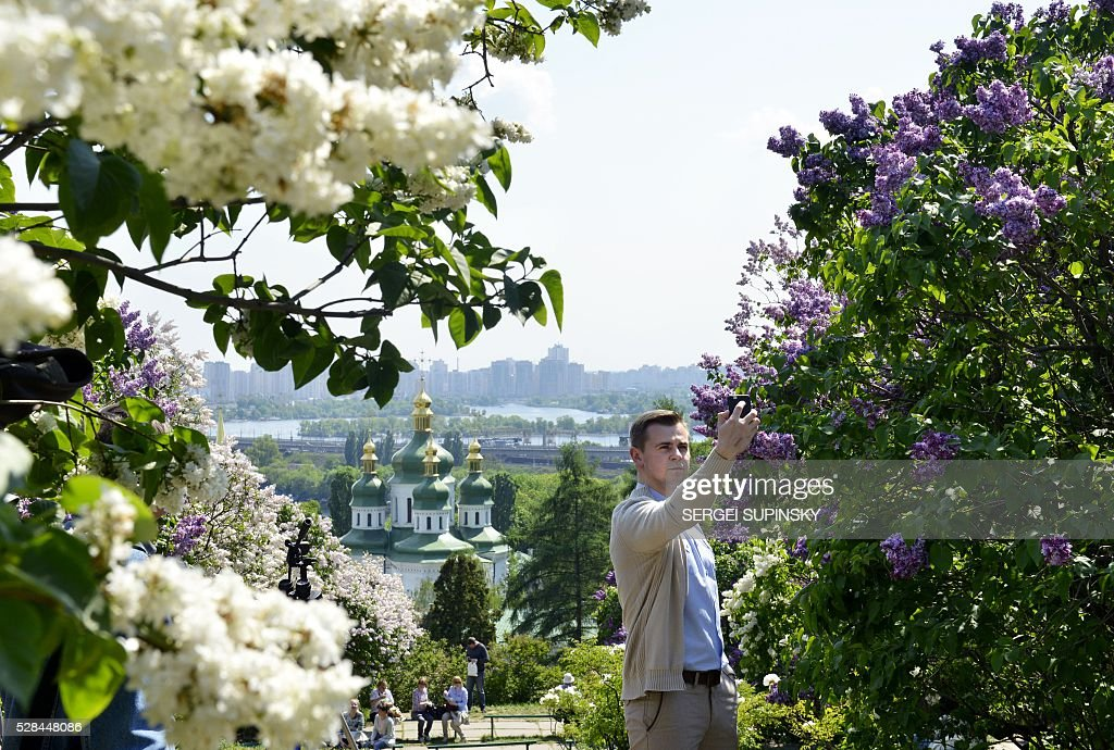 A man makes selfie among blossoming lilacs in the Botanical Garden of Kiev on May 5, 2016. / AFP / Sergei SUPINSKY