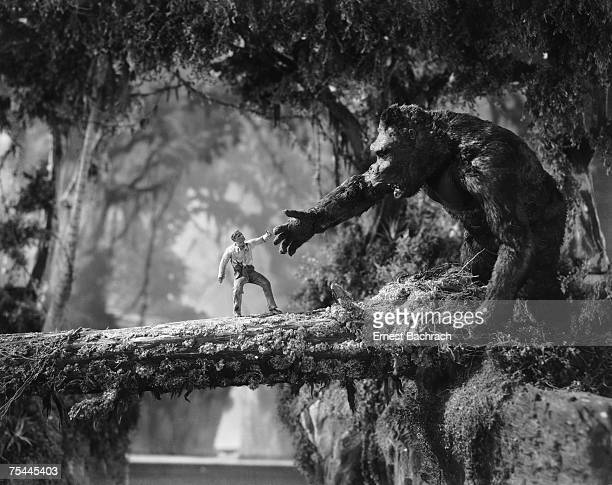 Man meets giant ape across a fallen tree branch in a scene from the classic monster movie 'King Kong' 1933