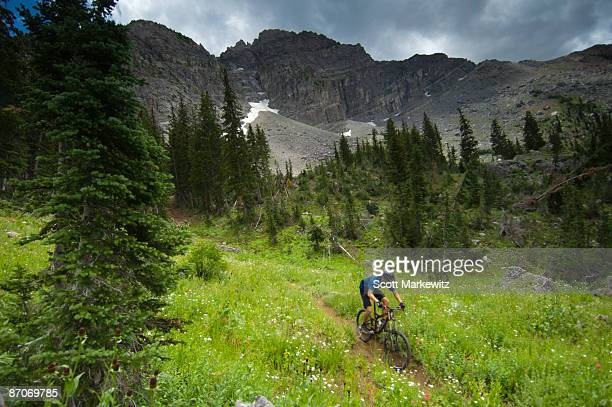 Man mountain biking in the high mountains of Utah.