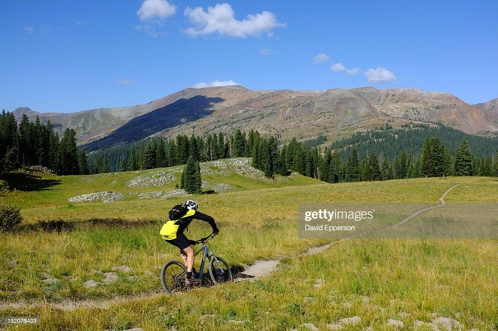 Man mountain biking on famous 401 Trail : Stock Photo