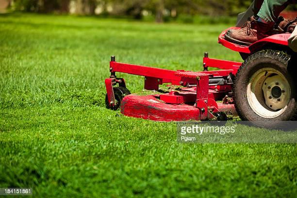 Homme Tondre la pelouse