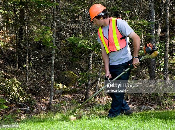 Man Mows Trims Grass Wearing Safety Equipment