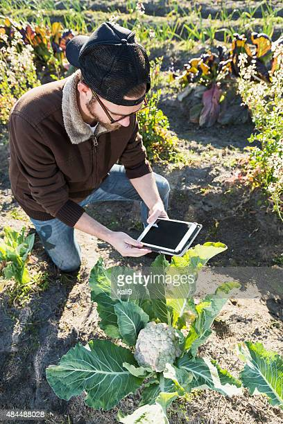 Man on an organic vegetable farm with digital tablet