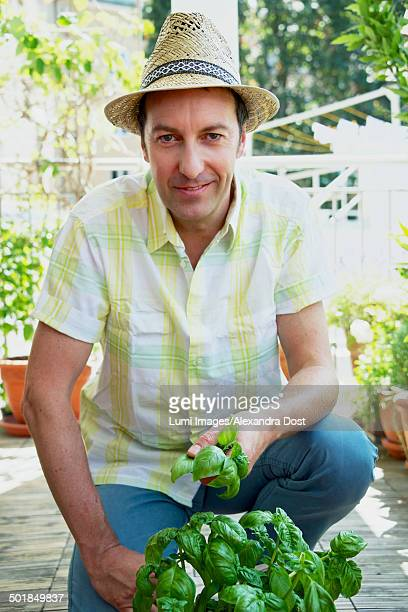 Man On Balcony Holding Basil In Hands