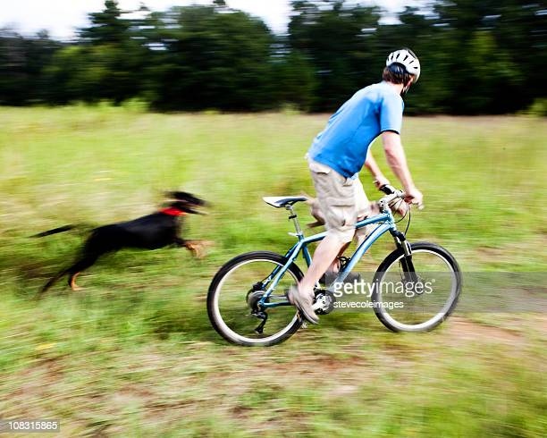 Man on Bike Races Dog