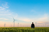 Man on green field of wheat with windmills for electric power production. Alternative energy sources.Ecologically clean energy sources.