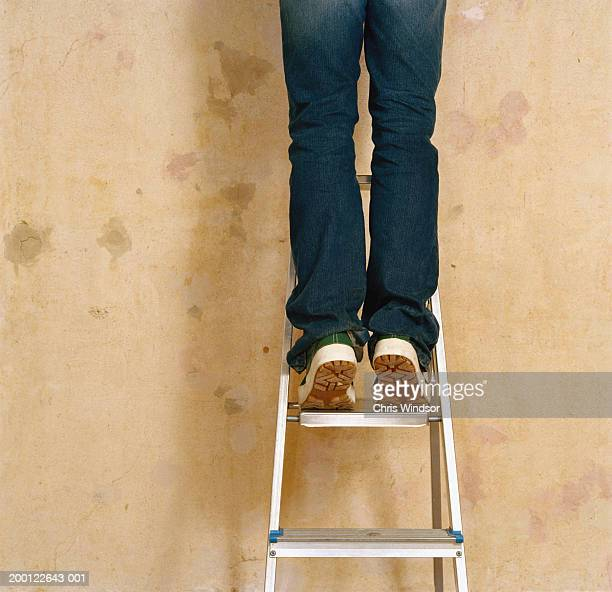 Man on stepladder in front of bare wall, rear view, low section