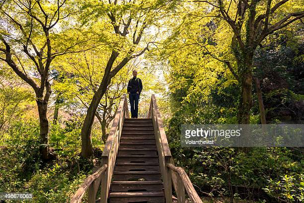 Man on top of wooden stairs in the forest