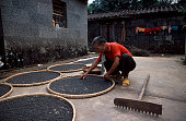 A man organizes his seeds at his home in Yongdong village which is just on the outskirts of the Mission Hills Hainan Island Golf Course development...