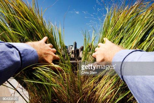 Man parting green grass