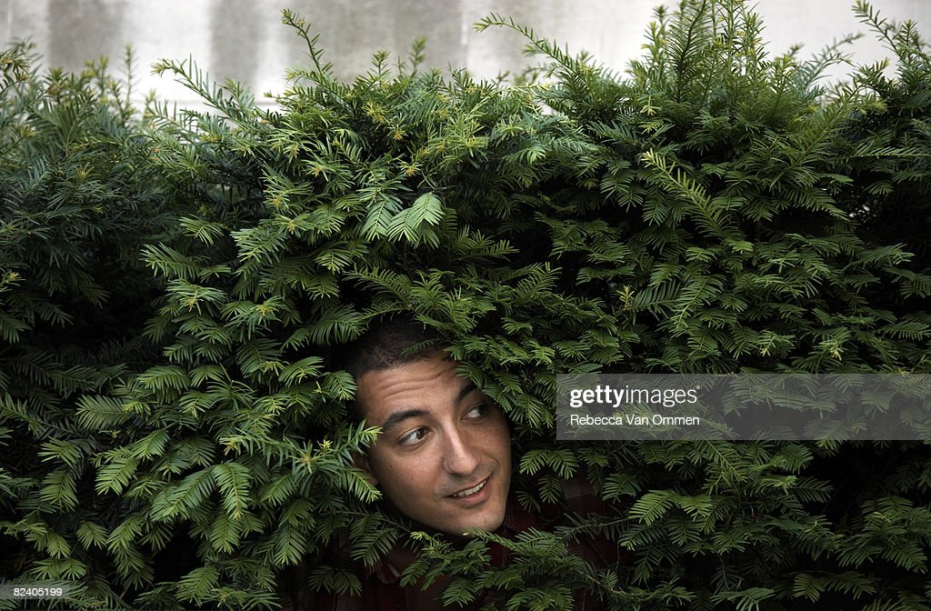 Man peering out from bush