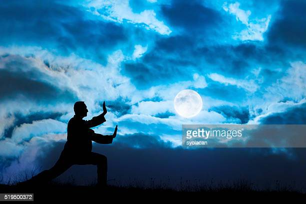 Man performs Tai Chi sport under moonlight