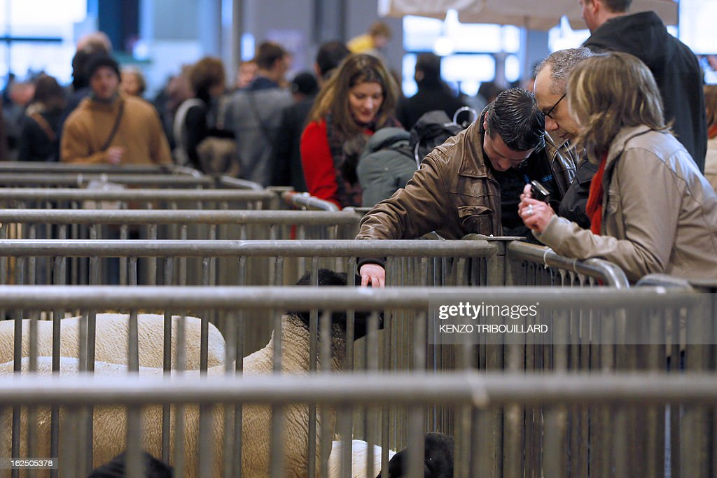 A man pets a sheep as he visits the 50th International Agriculture Fair of Paris at the Porte de Versailles exhibition center, on February 24, 2013 in Paris. Some 1,300 exhibitors and 4,000 animals attend the fair which runs from from February 23 to March 3, 2013
