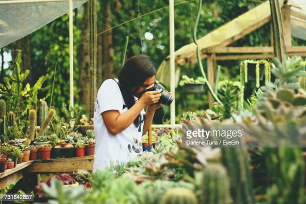 Man Photographing In Greenhouse