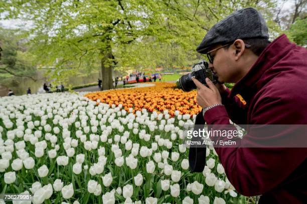 Man Photographing Tulips From Camera At Park