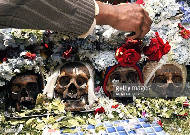 A man places flowers on 'ñatitas' on November 8 2011 at the general cemetery in La Paz According to a traditional preColumbian Andean ritual...