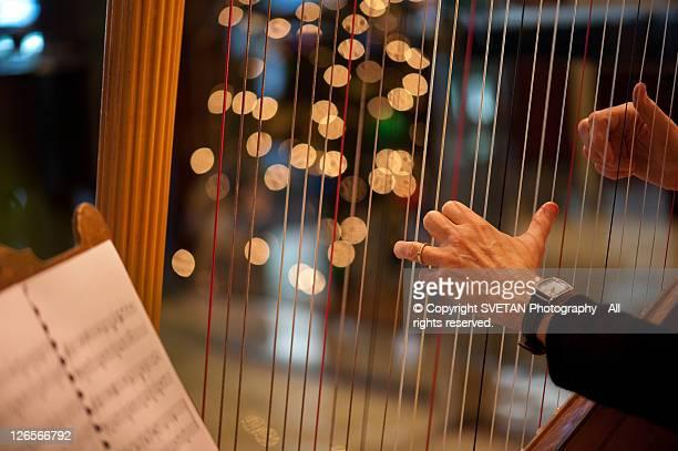 Man playing harp strings