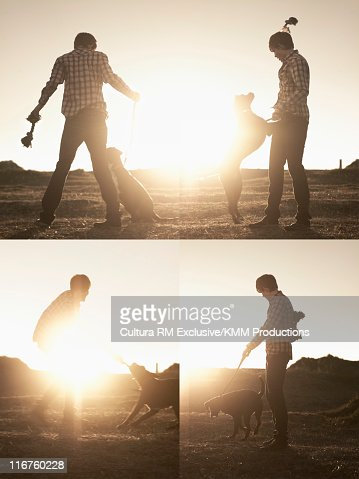 Man playing with dog in park : Stock Photo