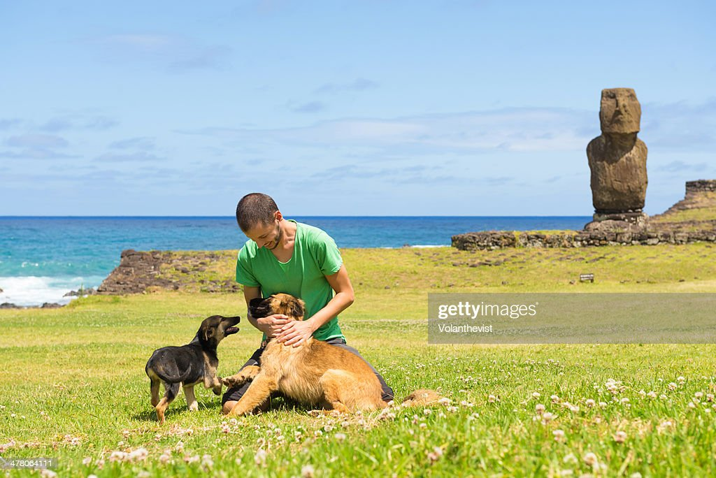 Man playing with two dogs in a meadow with a moai