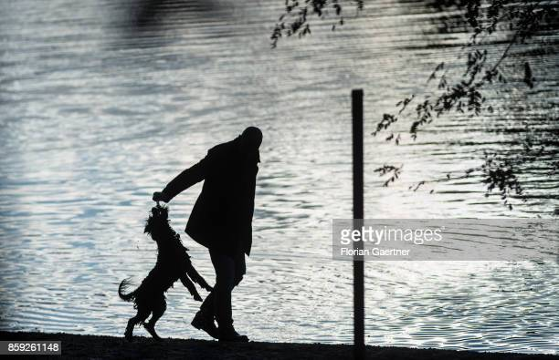 A man plays with his dog on October 08 2017 in Berlin Germany
