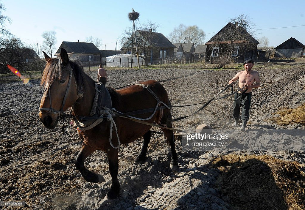 A man ploughs his field near the Belarus village of Veresnitsa, some 290 km south of Minsk on April 22, 2013