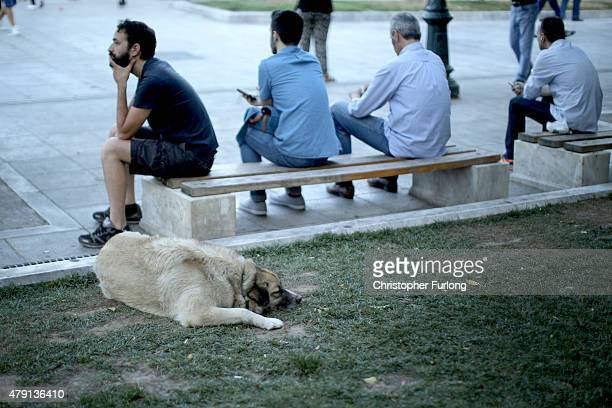 A man ponders as his dog sleeps in Syntagma Square next to the Greek Parliament on July 1 2015 in Athens Greece Earlier today Greek Prime Minister...