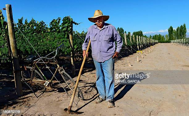 A man poses for a photograph while taking care of the vineyard at Joaquin Villanueva farm part of the Luminis winery project in the district of...
