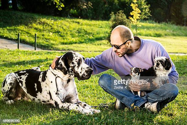 Man posing with his dogs (Great Dane, Shih Tzu, Chihuahua)