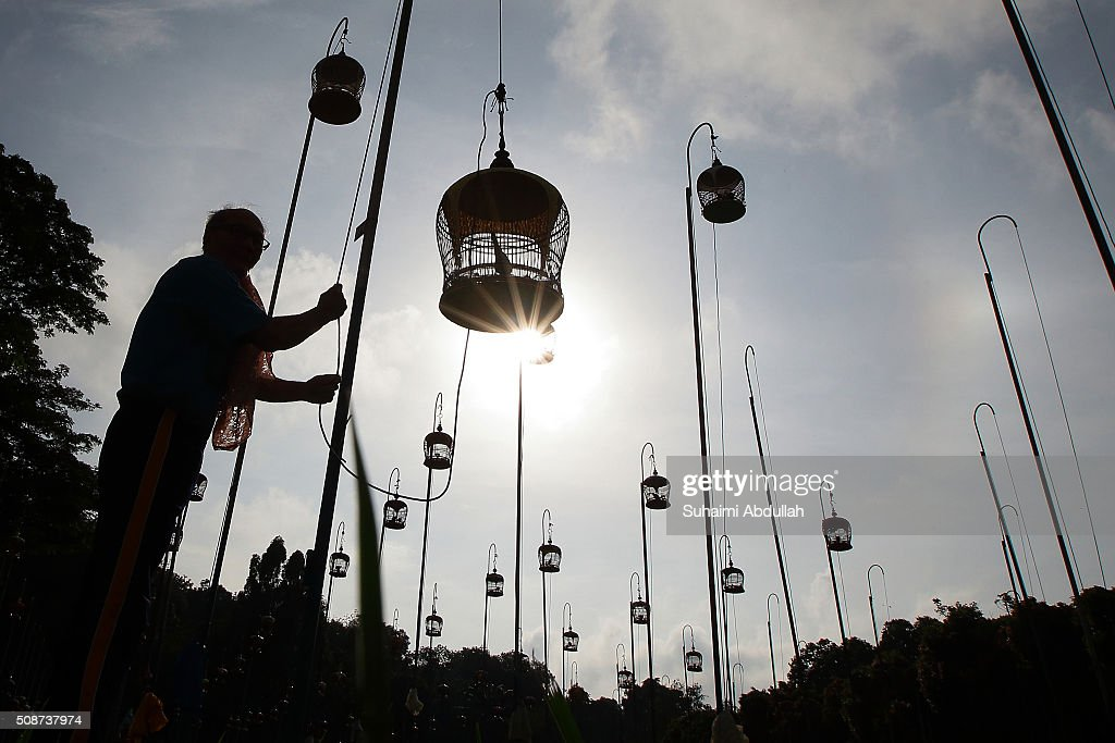 A man prepares to hang his ornately decorated birdcage up a pole at a bird singing corner on February 6, 2016 in Singapore.