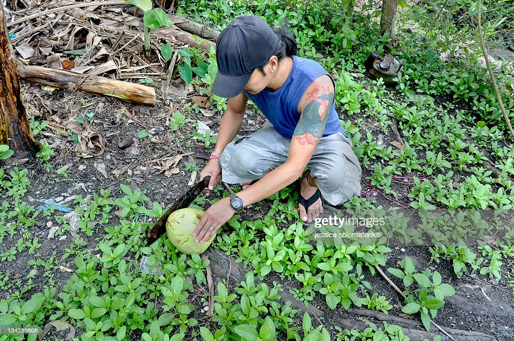 Man preparing young coconut : Stock Photo