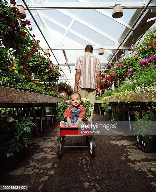 Man pulling toddler (1-3) and plants in wagon through nursery