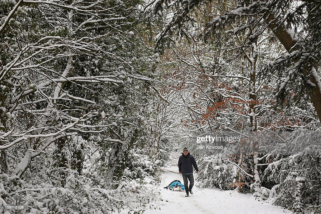 A man pulls a sledge through the woods at Box Hill on January 19, 2013 in Dorking, United Kingdom. Heavy snow around the UK caused hundreds of flight cancelations at Heathrow, with more travel disruptions expected during a snowy weekend. Approximately 3,000 schools were closed in England, Wales and Scotland.