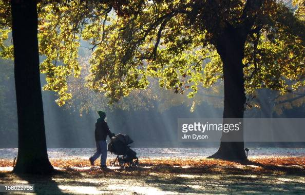 A man pushes a child's buggy through shafts of dappled light in Walpole Park in Ealing on November 11 2012 in London United Kingdom