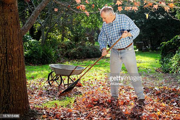 Mann Raking Blätter im Garten