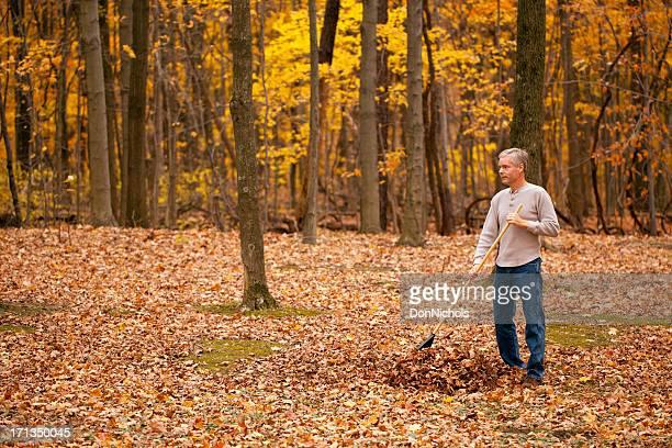 Homme cumuler feuilles dans les bois