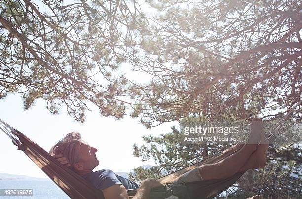 Man relaxes in hammock in pine forest, sea below