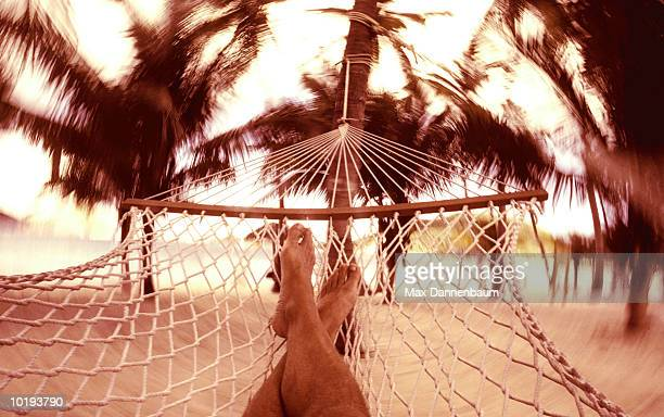 Man relaxing in hammock, low section, close-up