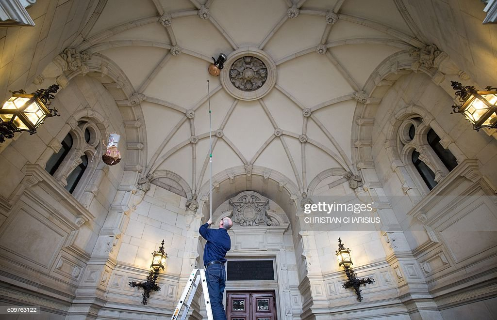 A man removes two helium-filled wedding balloons designed as bride and groom hanging at the foyer's ceiling of the city hall in Hamburg, northern Germany, on February 12, 2016. Preparations are under way for the so-called Matthiae-Mahl, a convention of representatives from political, social, economic and aristocratic life, that is attended in 2016 by the German Chancellor Angela Merkel and British Prime Minister David Cameron. / AFP / dpa / Christian Charisius / Germany OUT