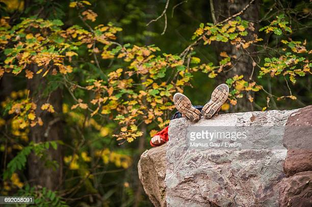 Man Resting On Rock In Forest During Autumn