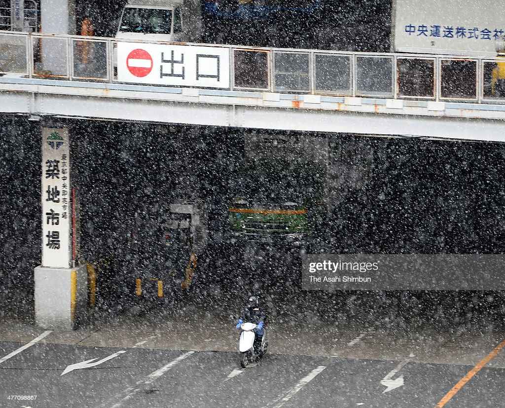 A man rides a bike in the snow at Tsukiji fish market on March 7, 2014 in Tokyo, Japan.