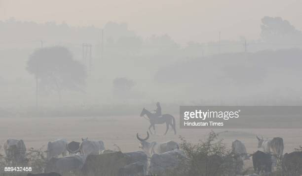A man rides a horse amid smog filled morning atmosphere in the outskirts of Dwarka on December 10 2017 in New Delhi India