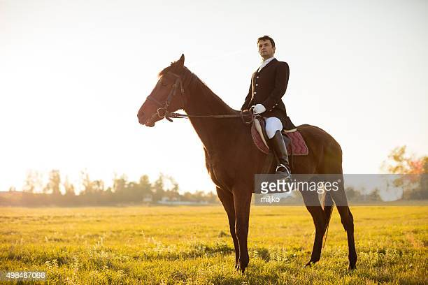 Man rides a horse on meadow