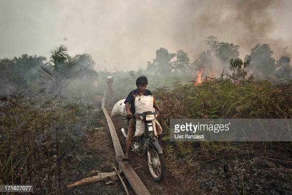 A man rides a motorcycle through haze as a forrest fire burns bushes and fields June 27 2013 in Siak Regency Riau Province Indonesia The fires on...