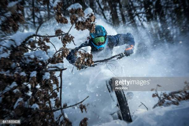 Man rides fat bike in the forest